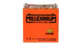 Millennium YTZ10S Super Igel